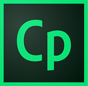 Adobe Captivate картинка №10240