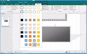 Microsoft Publisher 2019 (OLP) картинка №13627