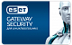 ESET Gateway Security for Linux/Free BSD картинка №7899